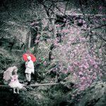 [創作]春を運ぶ*2016.04.02